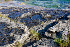 Coastal Rock Shelf. Flat rocky coastal area with wild grass growing in the cracks, with emerald water in the background Royalty Free Stock Image