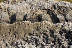 Coastal rocks eroded by the sea Stock Image