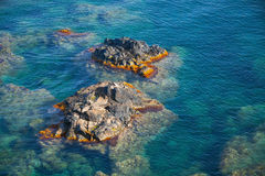 Coastal rocks in Mediterranean Sea, Corsica Royalty Free Stock Images