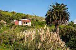 Coastal, rural, casa de vacaciones, península de Mahia, costa este, isla del norte, Nueva Zelanda imágenes de archivo libres de regalías