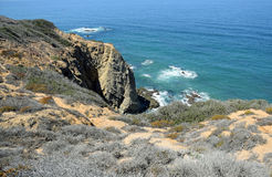 Coastal Sage Community in the Dana Point Headlands Conservation area.. Stock Images