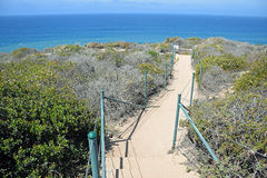 Coastal Sage Community in the Dana Point Headlands Conservation area.. Image shows a walkway within part of the protected Coastal Sage Community in the Dana stock images