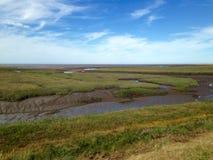 Coastal Salt Marsh Stock Photo