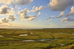 Coastal Salt Marsh. View across the protected landscape of De Slufter, an expansive area of salt marshes and tidal creeks, a rich  area for fauna and flora on Royalty Free Stock Photos