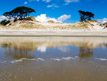Coastal sand dune reflections on beach at low tide Stock Photography