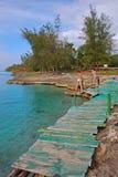 Coastal sandless beach nearby Peninsula de Zapata National Park, Cuba Stock Photography