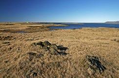 Coastal scene. With blue sky, Iceland royalty free stock photos
