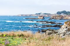 Coastal scene with breakers hitting rocks. And flowers in the foreground stock photos
