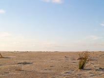 Coastal scene. Stock Images
