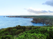 Coastal scenery at Guadeloupe Stock Images