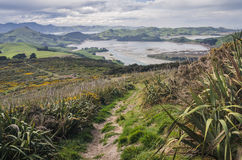 Coastal track, New Zealand Royalty Free Stock Images