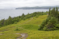 Coastal trail in Newfoundland Stock Photos