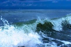 Coastal transparent sea crashing wave Royalty Free Stock Images