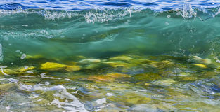 Coastal transparent sea/ocean wave. Coastal sea wave with clean transparent water. Close up. Copy space stock photos