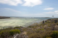 Coastal vegetation Amoronia orange bay, north of Madagascar Stock Images