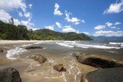 Coastal vegetation north eastern Madagascar Royalty Free Stock Image