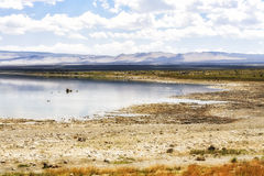 Coastal view  of Mono Lake, California, USA Stock Photo