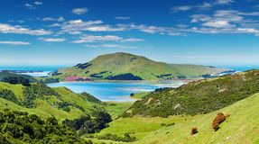 Coastal view, New Zealand Stock Images
