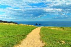 Coastal view, Pacific coast of New Zealand, Otago Peninsula Royalty Free Stock Images