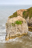 Coastal voew of Flamborough Head Yorkshire Stock Image