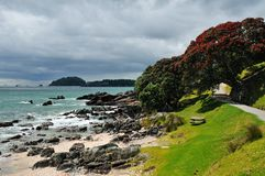 Coastal walk at Manganui, Bay of Plenty, New Zeala Royalty Free Stock Photos
