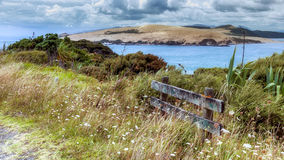 Coastal Walk near Arai-Te-Uru Recreation Reserve in Omapere in N Royalty Free Stock Image