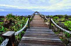 Coastal walkway in Caribbean Royalty Free Stock Image