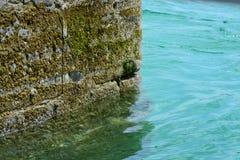 Coastal wall. Coastal harbour wall with beautiful water Royalty Free Stock Photos