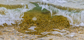 Coastal wave with clean transparent water. Close up. Coastal sea wave with clean transparent water. Close up royalty free stock photos