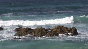Coastal Waves stock video footage