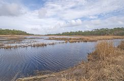 Coastal Wetland on a sunny day. In the Santee Coastal Reserve in South Carolina stock photos