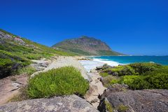 Coastal wilderness (South Africa) Stock Image