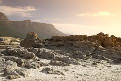 Coastal wilderness (South Africa) Royalty Free Stock Image