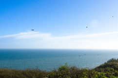 Coastguard Helicopter and a flock of birds by the sea Stock Photo