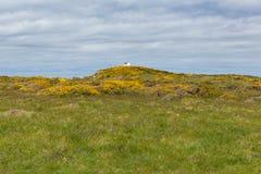 Coastguard station on hill overlooking Skomer Island Stock Photo