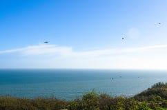 Coastguardhelikopter och en flock av fåglar vid havet Arkivfoto