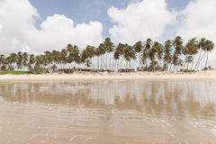 Coastile norte, o Rio Grande do Norte, Brasil imagem de stock