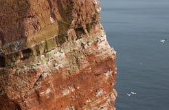 Coastine van het eiland Helgoland Stock Afbeeldingen