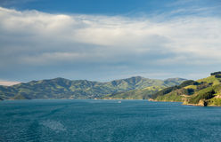 Coastline at Akaroa in New Zealand Royalty Free Stock Photography