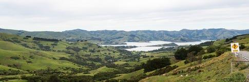 Coastline at Akaroa in New Zealand Royalty Free Stock Images