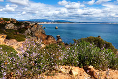 Coastline Algarve with flowers in the spring. Portugal, near Lagos Royalty Free Stock Photo