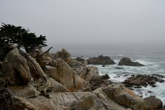Coastline along the 17 Mile Drive Stock Images