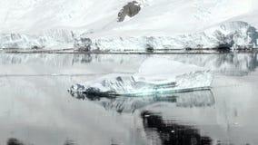Coastline of Antarctica - Global Warming - Ice Formations stock video footage