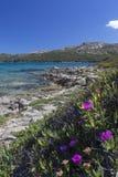 Coastline of Baja Sardinia - Sardinia - Italy Stock Photo