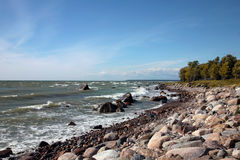 The coastline of Baltic sea. Baltic sea on windy day Royalty Free Stock Images