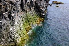 Coastline, Basalt Pillars. Basalt pillars build the coastline at Arnarstapi, Iceland Stock Photos
