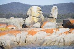 Coastline Bay of Fires, Tasmania, Australia Stock Photography