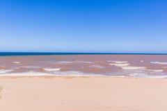 Coastline Beach Brown River Blue Ocean Stock Images