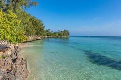 Free Coastline Beach Kizimkazi Unguja Zanzibar Island Tanzania East Africa Stock Image - 144757441