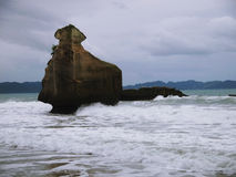 Coastline and birds. Rocks and birds around cathedral cove Stock Image
